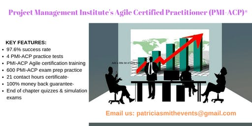 PMI-ACP Certification Training Course in Angels Camp, CA