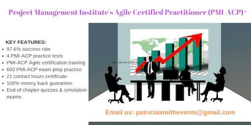 PMI-ACP Certification Training Course in Anza, CA