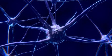 8th International Conference on Neurodegenerative Disorders & Stroke (PGR) tickets