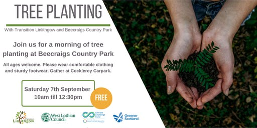 Tree planting with Transition Linlithgow at Beecraigs Country Park