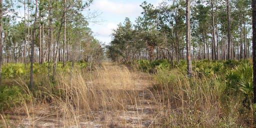 Apalachicola NF Trail Maintenance_Nov. 2019