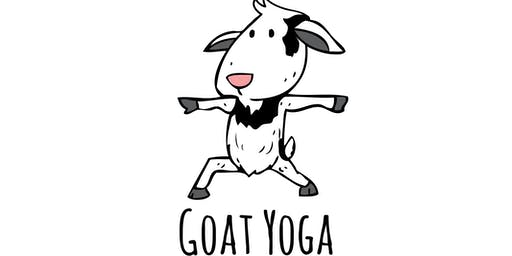 Goat Yoga at The Historic White Home