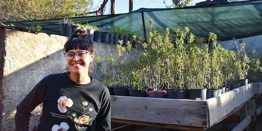 Native Plant Workshop 11/16/19