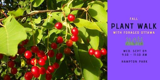 Fall Edible Plant Walk - Hampton Park