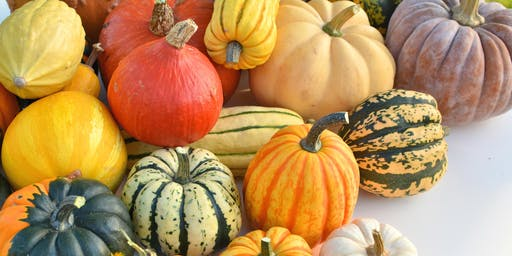 CANCELLED- Toddler Food Explorers Love Pumpkin and Squash