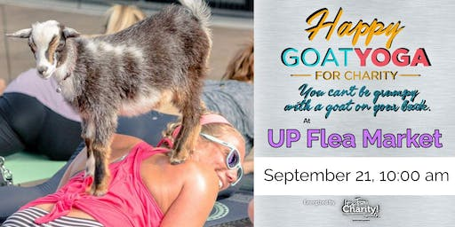 Happy Goat Yoga-For Charity at UP Flea Market