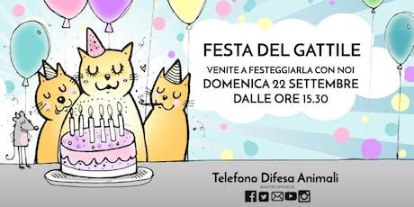 Festa del Gattile biglietti