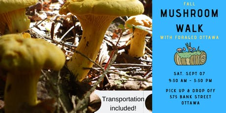 Fall Wild Mushroom Walk - Ottawa Valley tickets