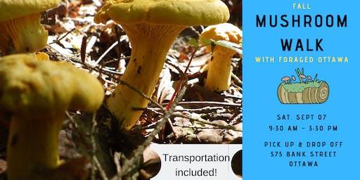 Fall Wild Mushroom Walk - Ottawa Valley