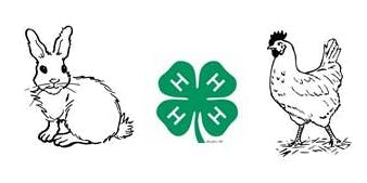 4-H Rabbit & Poultry EXPO