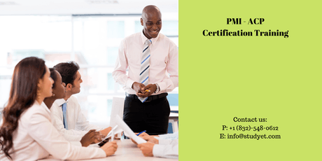 PMI-ACP Classroom Training in Redding, CA  tickets