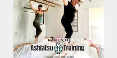 Ashiatsu Bar Massage 20 CE Classroom Certification Training Seminar Naples, FL