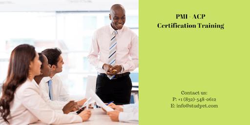 PMI-ACP Classroom Training in Williamsport, PA