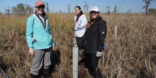 CRCL's Manchac Swamp Reforestation Volunteer Planting Event - November 8th, 2019