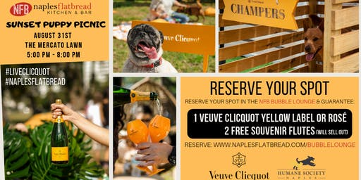 Veuve Clicquot Puppy Picnic