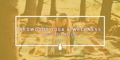 Redwoods Yoga and Wellness Experience: Transformation and Change