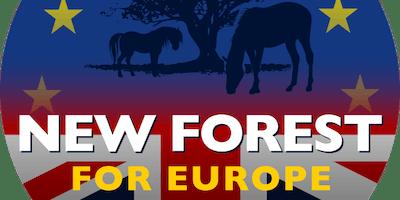 New Forest LOVE EU Festival
