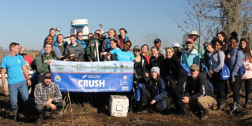 CRCL's Communities Restoring Urban Swamp Habitat Volunteer Planting Event - January 31, 2020