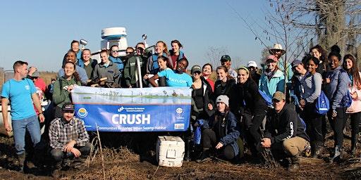 CRCL's Communities Restoring Urban Swamp Habitat Volunteer Planting Event - January 31, 2020