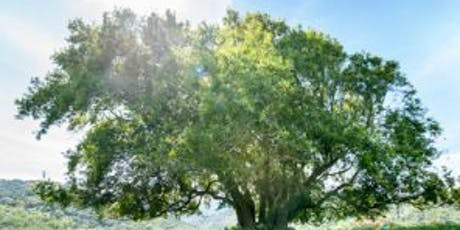 Hike at Rancho San Vicente with POST tickets