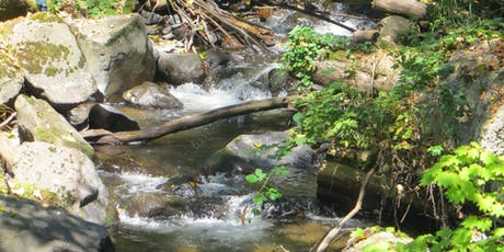 Workshop and Tour: Beautify and Care for Your Streamside Property tickets
