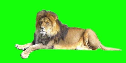 Green screen safari - Fawkner Library