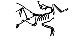 Arc'teryx Do Right Evening