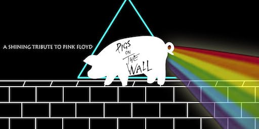 Pigs on the wall - a shining tribute to Pink Floyd