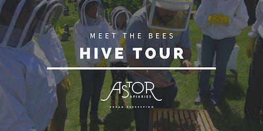 Meet The Bees Hive Tour