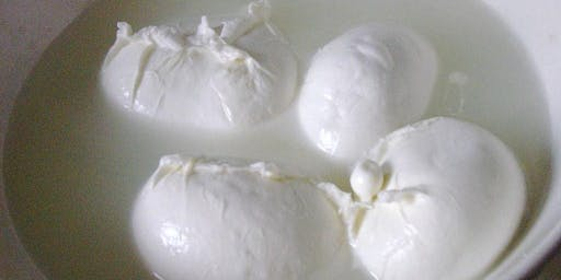 QUICK CLASS: Fresh Mozzarella and Ricotta