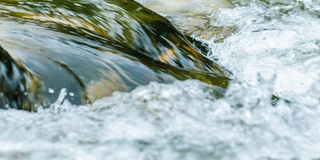Using a systems approach to identify sustainable solutions to water issues tickets