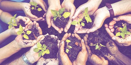 Seed Bomb Workshop at Manly Library tickets