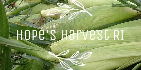 Sweet Corn Gleaning Trip with Hope's Harvest Tuesday 8/27/19