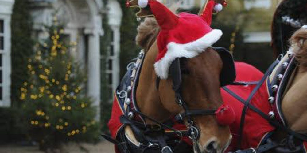 Christmas Horse.Christmas Carriage Rides