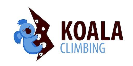 Koala Climbing bouldering