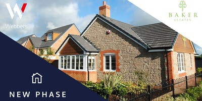 New Phase Launch | Bee Meadow