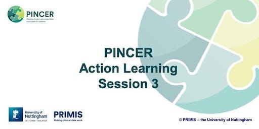 PINCER ALS 3 - for Eastern AHSN delegates - Session CANCELLED