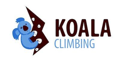 Koala Climbing top roping