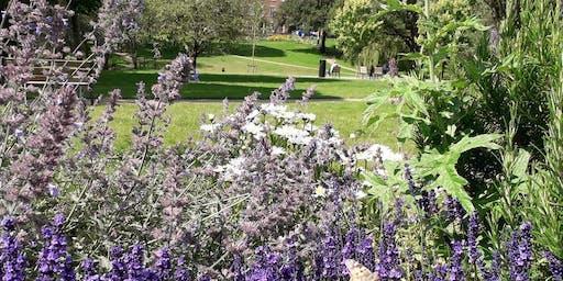 """""""A Walk in the Park"""" Preston Arts Festival"""