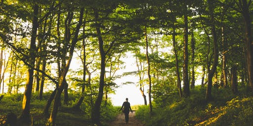 Yoga & Mindful Walking