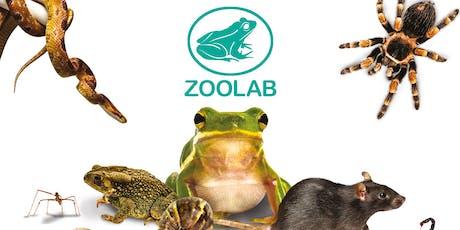 QG Super Saturdays: Zoolab tickets