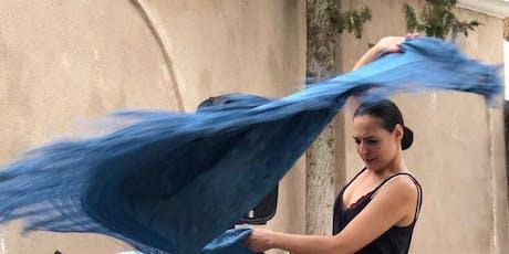 Una Noche de Flamenco entradas