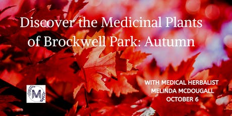 Discover the Medicinal Plants of Brockwell Park: Autumn tickets