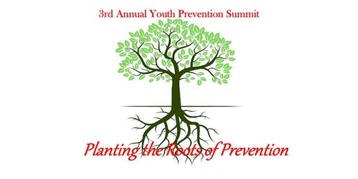 3rd Annual Cattaraugus County Youth Prevention Summit