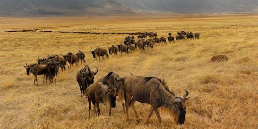 Conférence: Namibie et Tanzanie 02 octobre