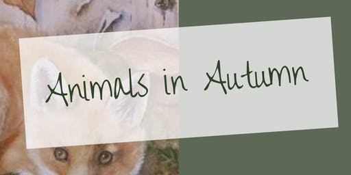 Youth Class - Animals in Autumn