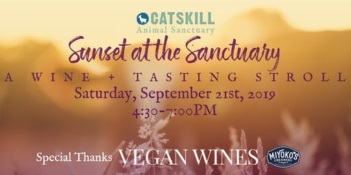 Sunset At The Sanctuary: A Wine + Tasting Stroll