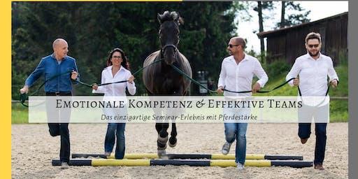 Emotionale Kompetenz & Effektive Teams