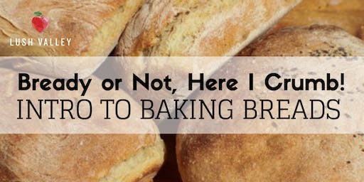 Bready or Not, Here I Crumb! Intro to Baking Bread