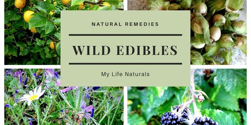 Wild Edibles Foraging Workshop